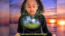 Les Messagers de l'Aube – Enseignement des Pléiadiens 2-3 FR