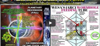 Fallen Black Hole and Wormhole Systems
