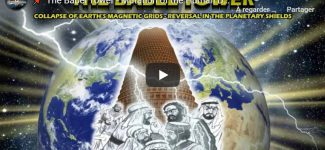 The Babel Tower – Mutation of the Human DNA Template